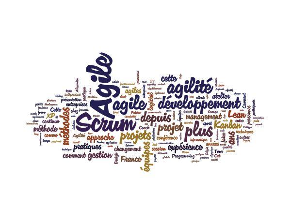 Nuage de tag du Programme Agile Tour Vannes 2011